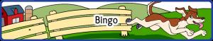 Bingo Small
